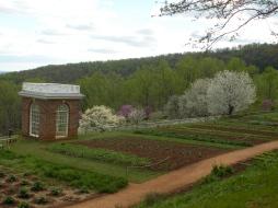 Monticello Spring 2011