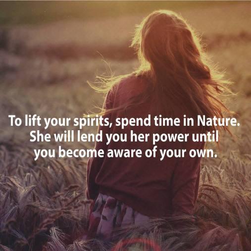 Nature #7
