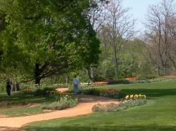 Strolling through the Garden