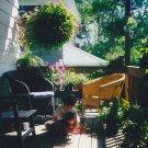 porch-at-oneonta