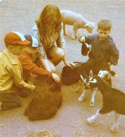 102 - Feeding the Animals